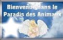 paradis des animaux