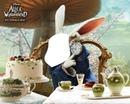 lapin blanc d'alice