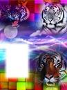 """""""fantasy met tijgers"""""""