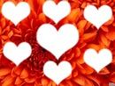 Les 7 coeur