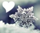 Zimsko srce :)