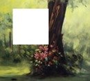 tree-flowers-blurred bachground-hdh