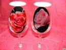 couleur roses