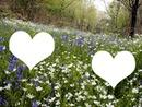 Spring-Printemps au bois joli