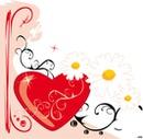 Marguerite au coeur