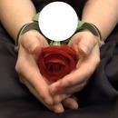 rosa jp