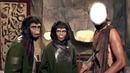 planeta de los simios