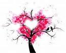 arbre a coeur