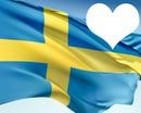 Sweden flag 1