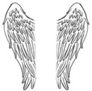 ailes d'ange