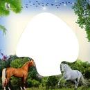 imagen con caballos