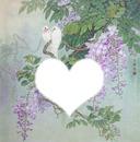 oiseaux glycine coeur