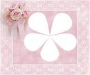 lutina rose