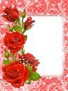 cadre de fleure