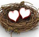Little love nest