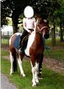 à l'équitation