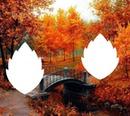 paysage d'automne flamboyant