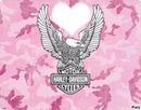 pink harley