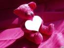 nounours rose coeur