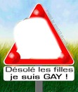 amour gay