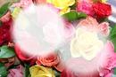 fleur coloring