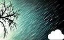 дождь соснегом
