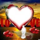 Love Colomba