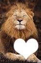 lion heureux