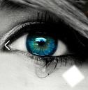 Magnifique yeux bleu