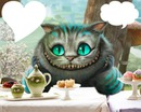 chat d'alice