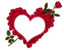 Cétina love