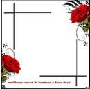 cadre  fleur gaetana