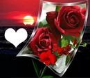 amour au coucher du soleil