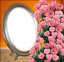 Cadre de roses rose