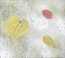 Rp Regentropfen der am Fenster klopfen