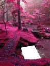 Bosque rosa