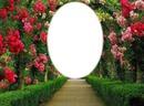 portail de fleurs