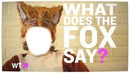 what does the fox say ?