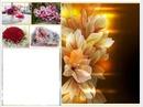 douceur de  fleurs
