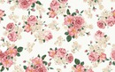 Floral Backgound