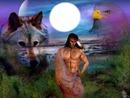 indien loup aigle