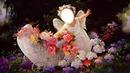 FLORES Y ANGELES