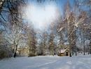 Féérie d' hiver