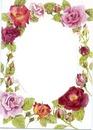 cadre roses 1 photo