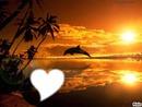 refle dans un coucher de soleil