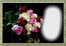 Lass Rosen sprechen