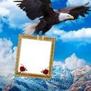 Cc Águila  con tu retrato