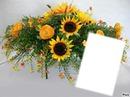 Bouquet du soleil