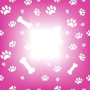 cadre trace de chien