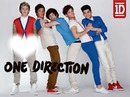 One Direction Zyan